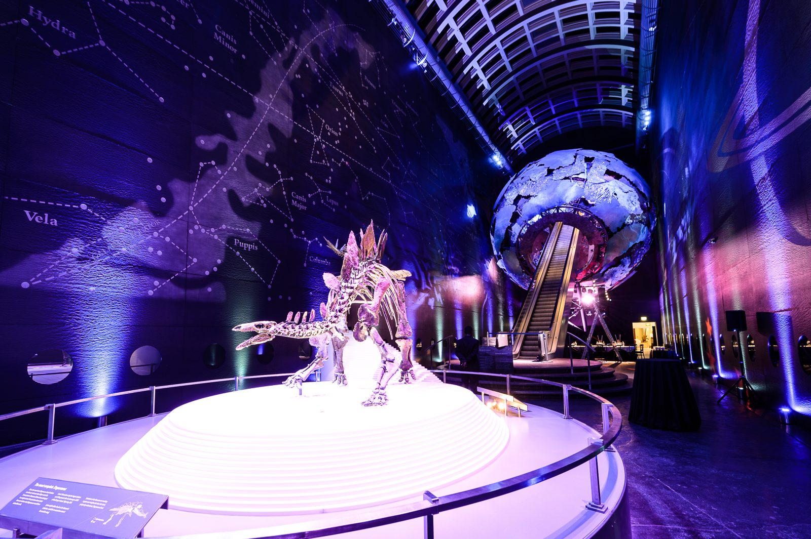 10th December 2015 Xmas Party @ Earth Halls, Natural History Museum, London PH: © Tom Horton