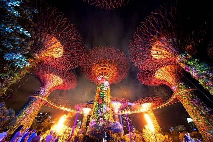 Gardens of the Bay - projeczion mapping